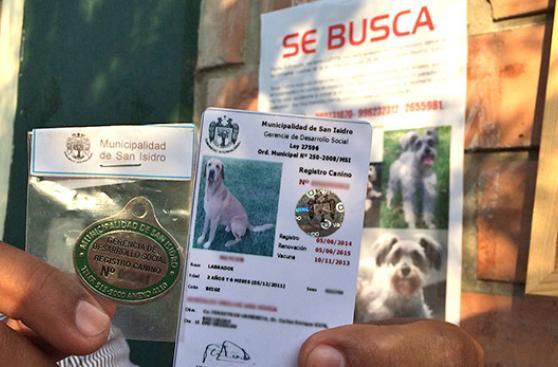 Registro de mascotas: una necesidad que clama adeptos
