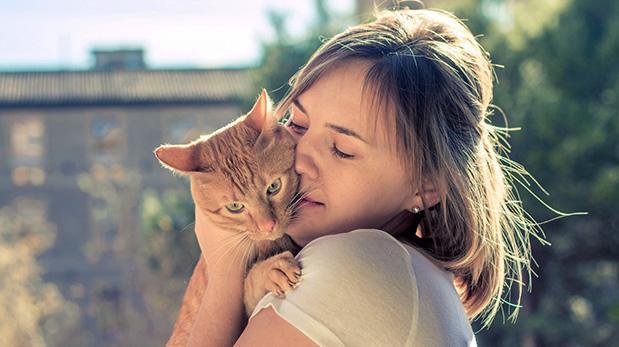 La indiferencia de los gatos: ¿Me quiere o no me quiere?