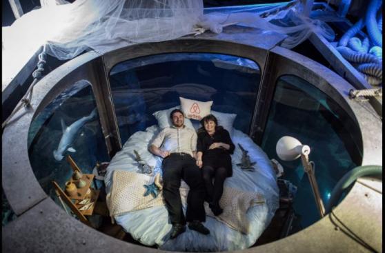 Así es una noche romántica entre tiburones en París [FOTOS]