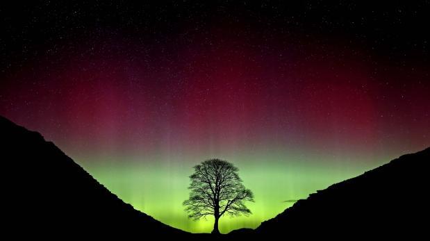 NASA muestra espectaculares imágenes de la aurora boreal