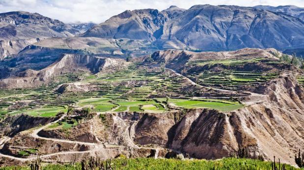 El Valle del Colca es un lugar para renovarse