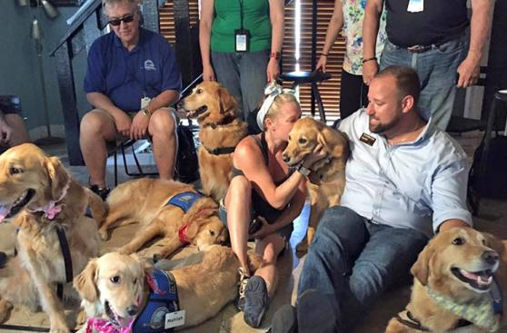 12 perros ayudan a víctimas de masacre en Orlando