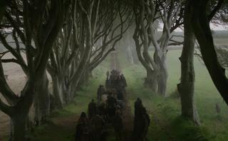 """""""Game of Thrones"""": icónico árbol de la serie se partió"""