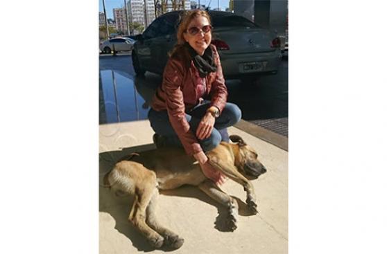 Azafata alemana adopta perro callejero argentino