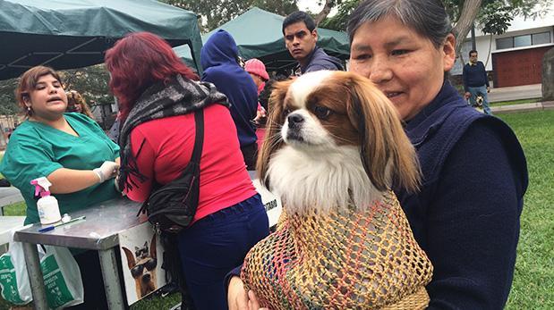 Pecana, una cachorrita con suerte