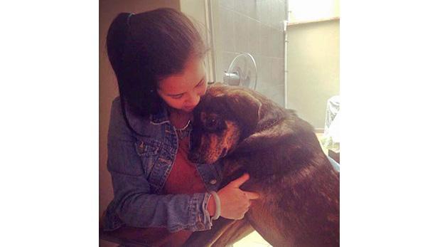 """Ni raza ni pedigree, solo quería un perro"""