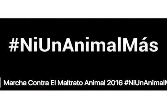 Convocan a marcha masiva contra el maltrato animal