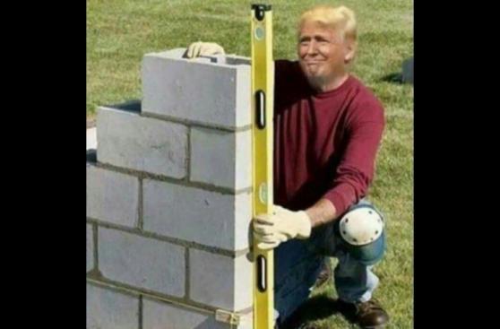 Mira los mejores memes tras la elección en Estados Unidos
