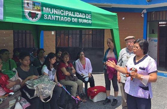 Campaña gratuita esterilizó a 30 mascotas en Surco