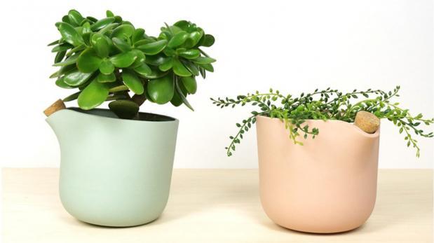 Las macetas que te avisan cuando tus plantas necesitan agua