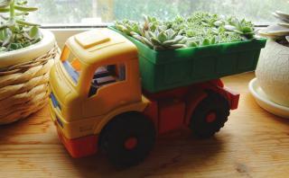 De juguetes viejos a macetas únicas: 6 DIY fáciles de hacer