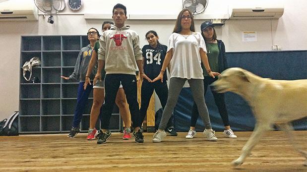 Túpac, fiel guardián de nuestros jóvenes bailarines
