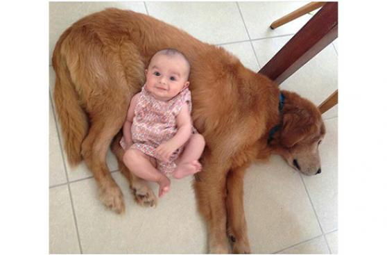 Pese a los retos, ellos siempre eligieron sus perros