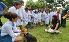 Taller de 'minivets' educará sobre cuidado de mascotas