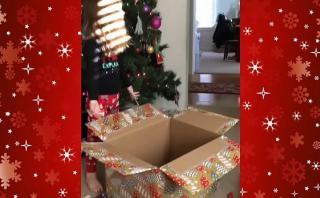 El final feliz en Navidad para una niña gracias a un gato
