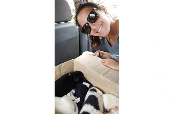 Viaje de año nuevo se convirtió en rescate de 7 cachorros