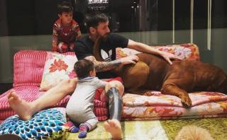 Instagram: la mascota de Messi que causa furor en la red