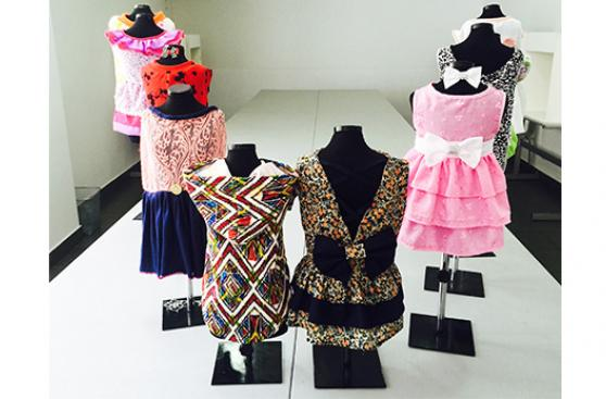 Instituto de moda prepara a diseñadores de alta costura canina