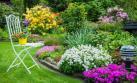 Cinco pasos para cuidar el jardín durante las lluvias