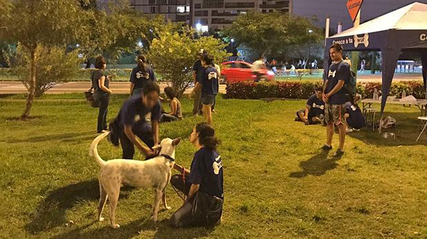 WUF y San Borja facilitan la adopción de perros