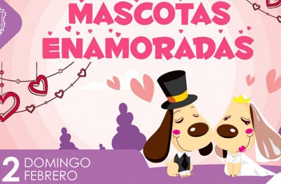 Eventos para celebrar el amor por tu mascota