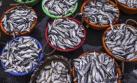 Pescado con mercurio aumentaría riesgo de tipo de esclerosis
