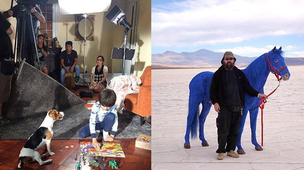Conoce el fino trabajo de quienes filman con animales