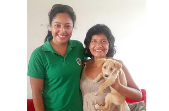 Se salvó de huaico y fue adoptada en Surco