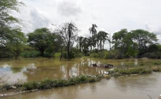Senamhi: habrá lluvias entre el domingo y martes en el norte