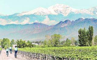 Mendoza: Disfruta de este paraíso del vino en estos lugares
