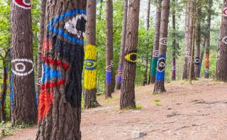 Oda: Ingresa a este mágico bosque repleto de arte