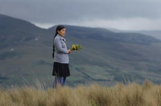 ¿Cómo se mueve la industria cinematográfica en el Perú?