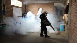 Piura: aumentan a ocho los fallecidos por dengue