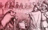 ¿Por qué durante siglos hubo juicios contra cerdos y ratas?
