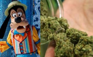 La marihuana entra en lista de cosas prohibidas en Disney World