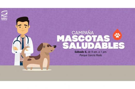 Próximas actividades para realizar con tu mascota en Lima