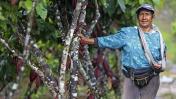 La otra cara del Vraem: las madres del cacao [FOTOS]