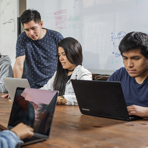 Netzun Plus, parte de la misma plataforma, ofrece cursos online a precios accesibles, entre S/50 y S/200.