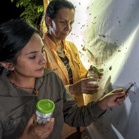 Los productos que se usan para el mantenimiento y la limpieza en los albergues son biodegradables.
