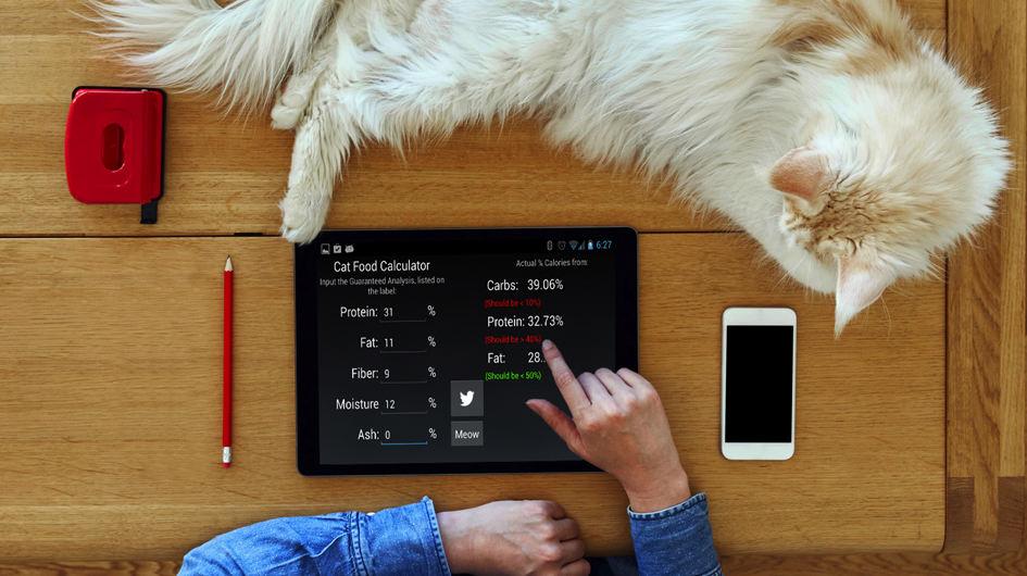 Cat Nutrition Calculator. Te permite estimar la cantidad de comida necesaria para tu minino, en función de parámetros como su tamaño o la actividad que realiza.