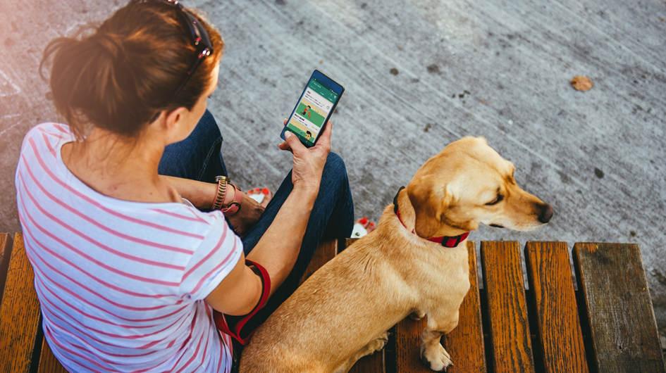 Dog Whistler. Disponible en iOS y Android, te ayudará en la tarea de educar a tu perro. A través de diferentes frecuencias, le podrás dar instrucciones básicas como sentarse, tumbarse y levantarse.