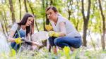 Medio ambiente: 5 actividades para reciclar en familia - Noticias de papel higiénico