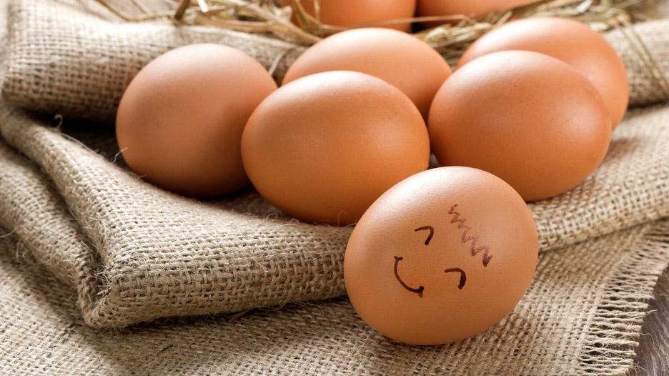 Día Mundial del Huevo: conoce las bondades de este alimento
