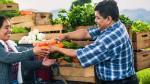 Asociatividad: conoce los beneficios de aliarte con otros productores - Noticias de evita