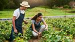 Turismo vivencial: ¿cómo ofrecerlo en una comunidad? - Noticias de tambo