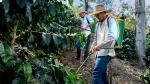 Tecnificación agrícola: la clave del desarrollo rural - Noticias de tambo