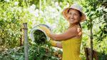 ¿Cómo fomentar el desarrollo sostenible en una comunidad? - Noticias de cultura