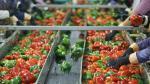 Ventajas de ofrecer un producto o servicio de calidad - Noticias de codex alimentario