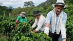7 consejos para elevar la producción agrícola - Noticias de compostaje
