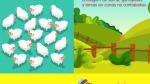 Consejos para criar y reproducir animales con éxito - Noticias de crianza